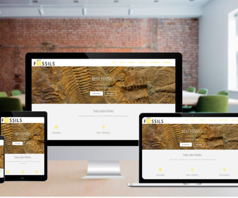Diseño Web – Best Fossils